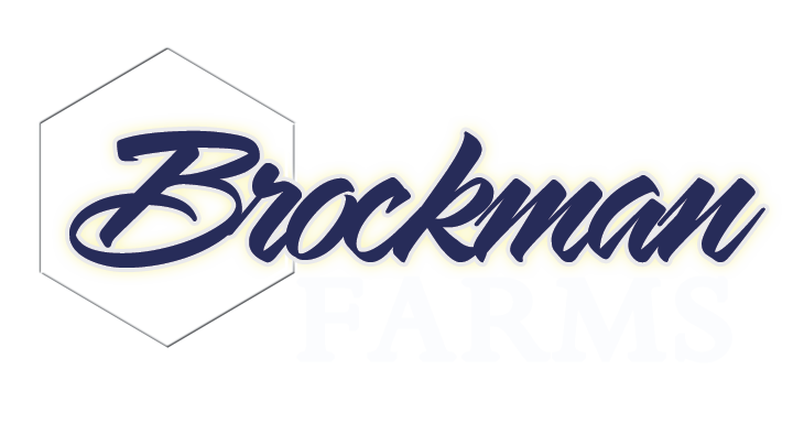 Brockman-logo-small-web-test